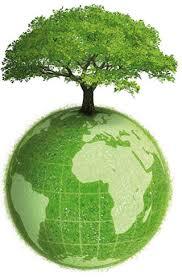 Icon of Ecologia